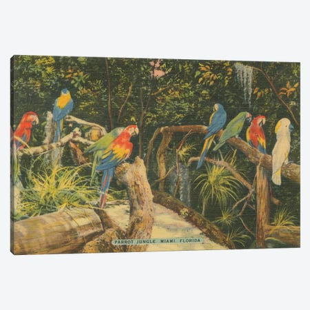 Florida Postcard II Canvas Print #WAC9717} by Wild Apple Portfolio Art Print