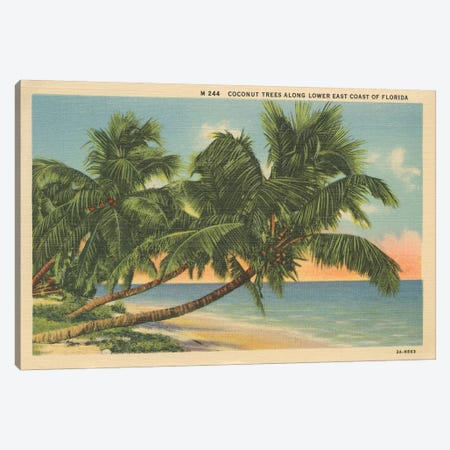 Florida Postcard III Canvas Print #WAC9718} by Wild Apple Portfolio Canvas Artwork