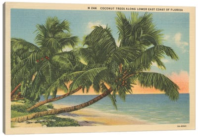 Florida Postcard III Canvas Art Print