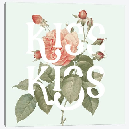 Botanical Pink Rose I Kiss Canvas Print #WAC9726} by Wild Apple Portfolio Canvas Wall Art