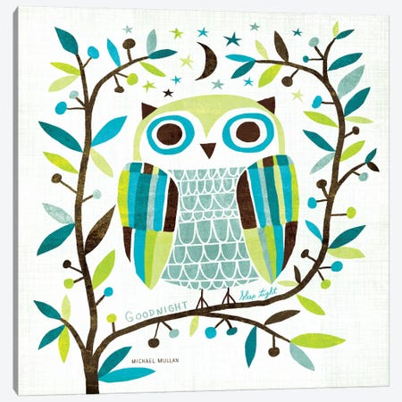 Night Owl II  Canvas Print #WAC975} by Michael Mullan Art Print