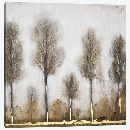 Gray Day I Canvas Print #WAG102} by Tim OToole Canvas Artwork