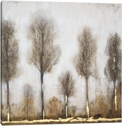 Gray Day I Canvas Art Print