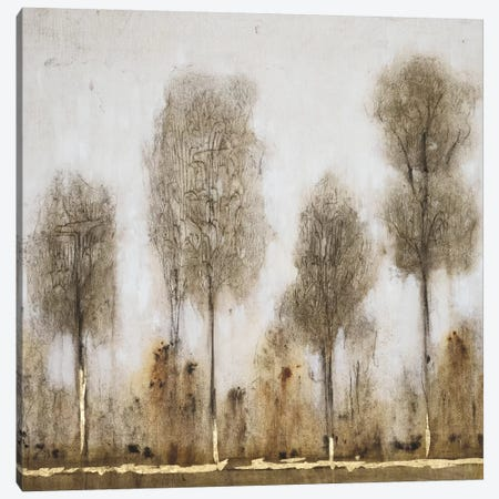 Gray Day II Canvas Print #WAG103} by Tim OToole Canvas Artwork