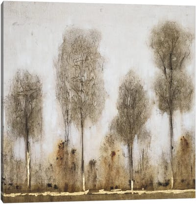 Gray Day II Canvas Art Print