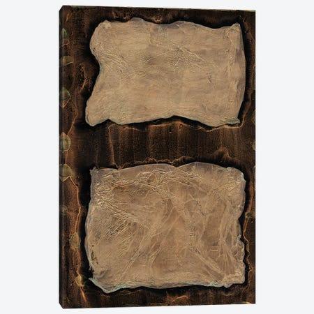 Outlier I Canvas Print #WAG115} by Renée Stramel Canvas Art