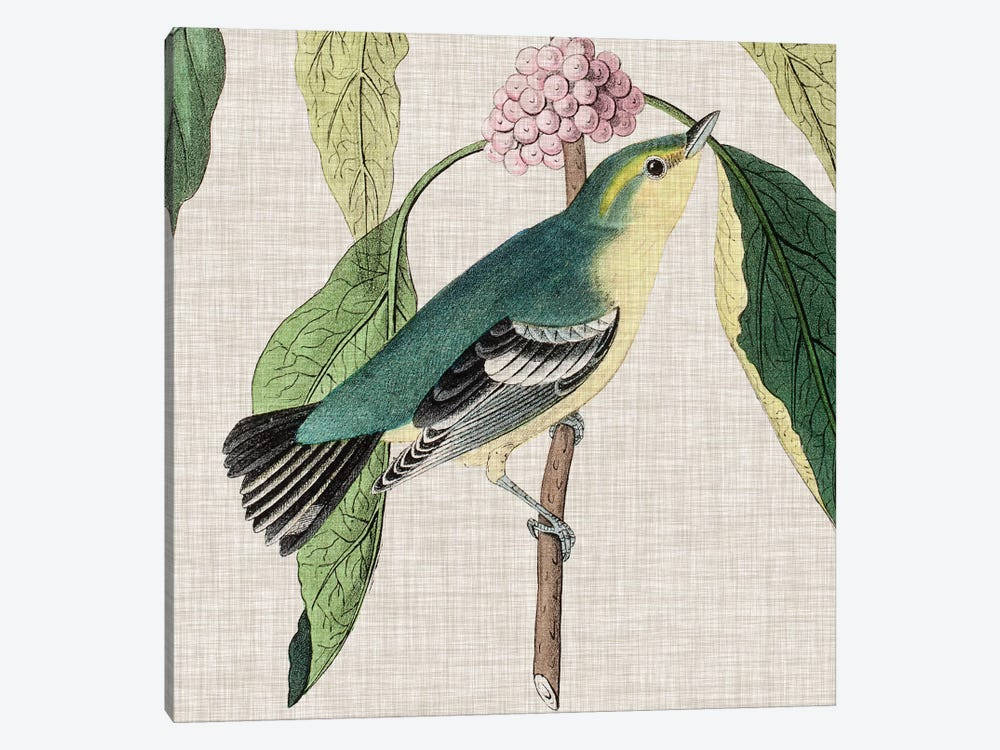 Avian Crop IV by John James Audubon 1-piece Canvas Artwork