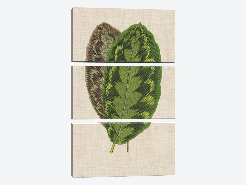 Leaves On Linen IV 3-piece Canvas Art Print