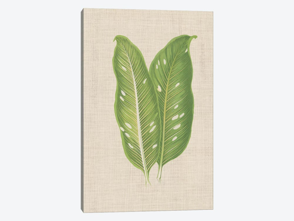 Leaves On Linen V by Unknown Artist 1-piece Canvas Wall Art