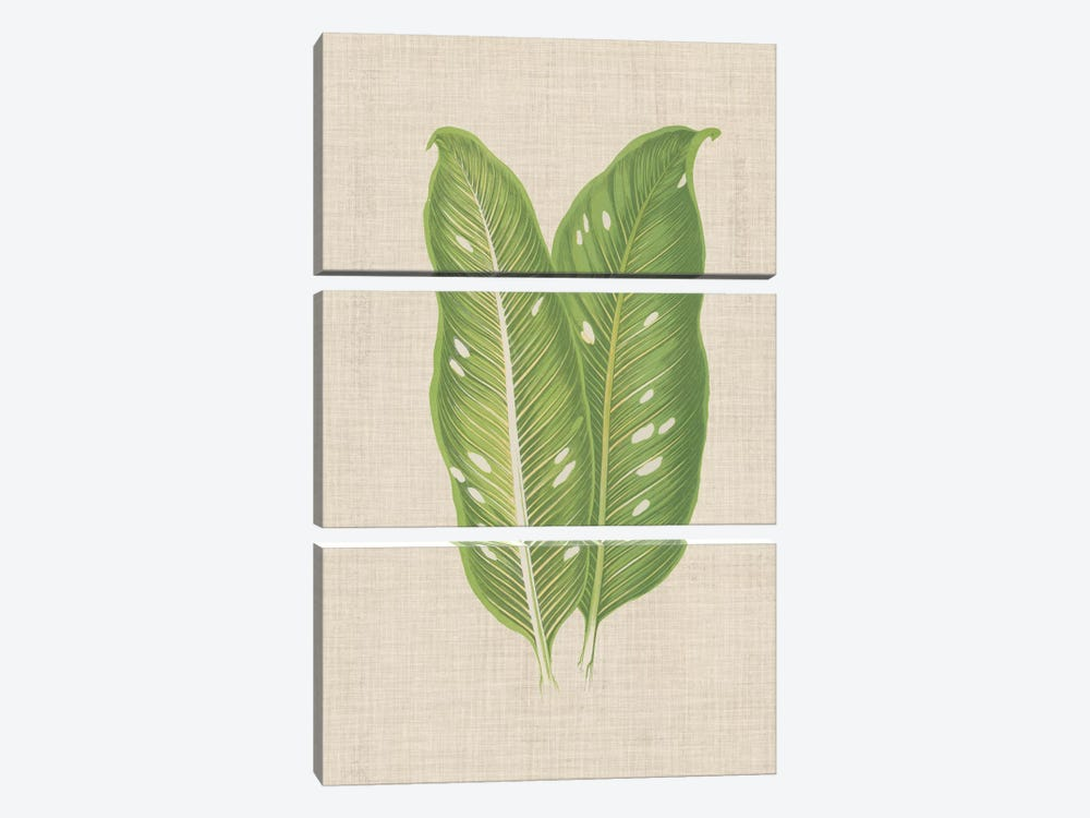 Leaves On Linen V by Unknown Artist 3-piece Canvas Artwork