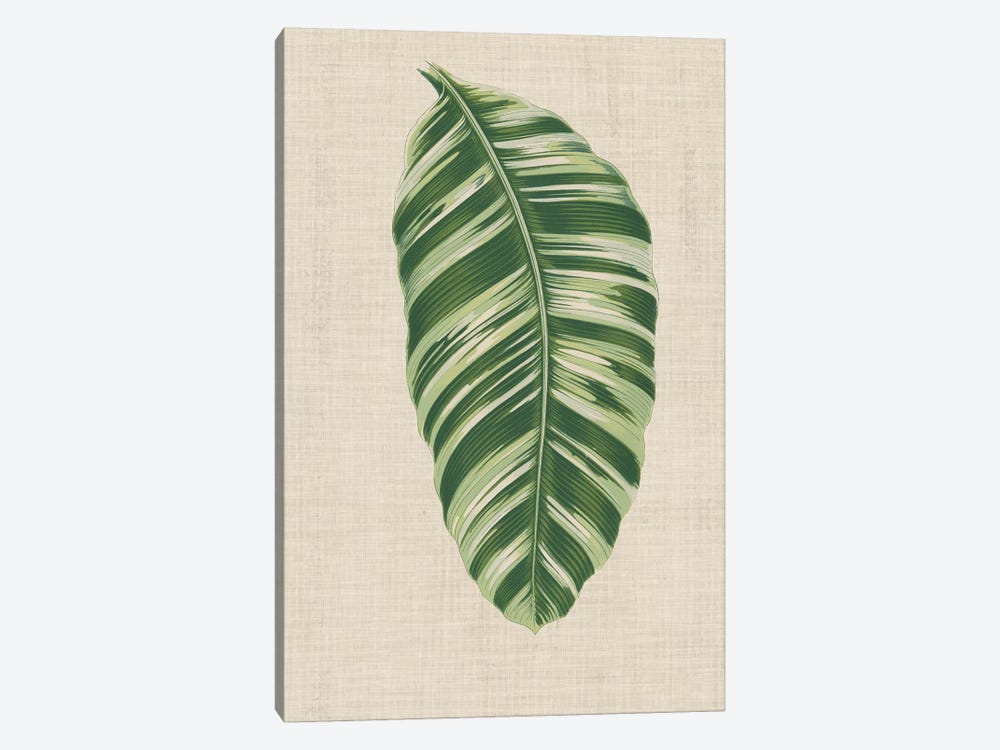 Leaves On Linen VI by Unknown Artist 1-piece Canvas Art