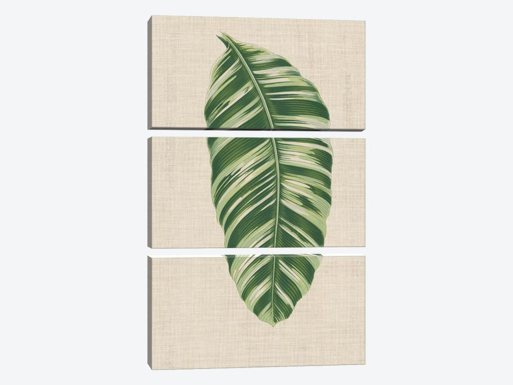 Leaves On Linen VI by Unknown Artist 3-piece Canvas Art