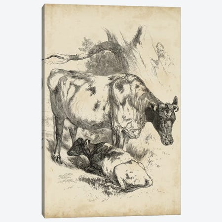 Pastoral Sketch I Canvas Print #WAG180} by Unknown Artist Canvas Artwork