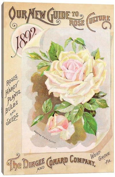 Antique Seed Packets IX Canvas Art Print