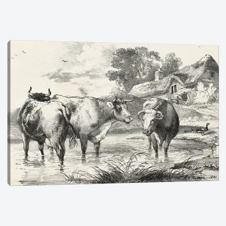 Rural Charms I Canvas Print #WAG24} by World Art Group Portfolio Canvas Artwork