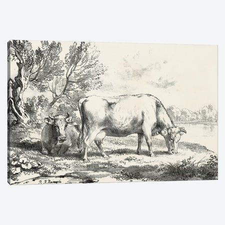 Rural Charms III Canvas Print #WAG26} by World Art Group Portfolio Canvas Wall Art