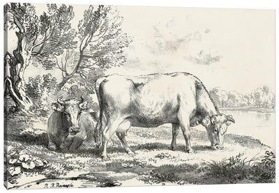 Rural Charms III Canvas Art Print