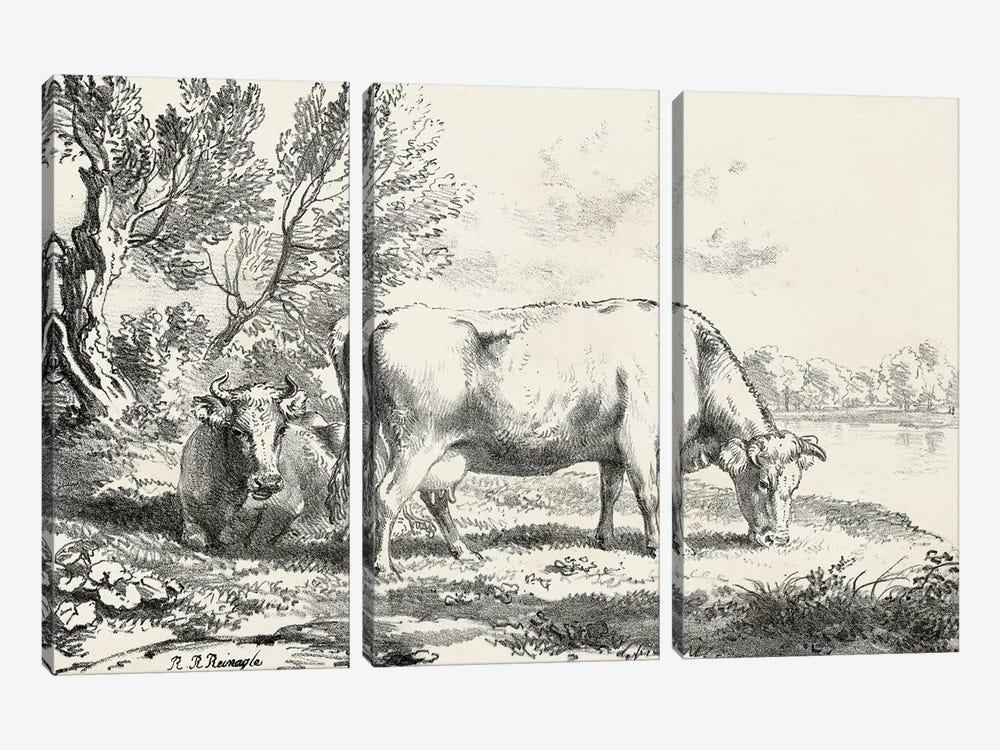 Rural Charms III by World Art Group Portfolio 3-piece Canvas Art Print