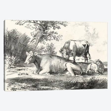 Rural Charms IV Canvas Print #WAG27} by World Art Group Portfolio Canvas Wall Art