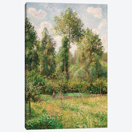 Poplars, Eragny Canvas Print #WAG50} by Camille Pissarro Canvas Artwork
