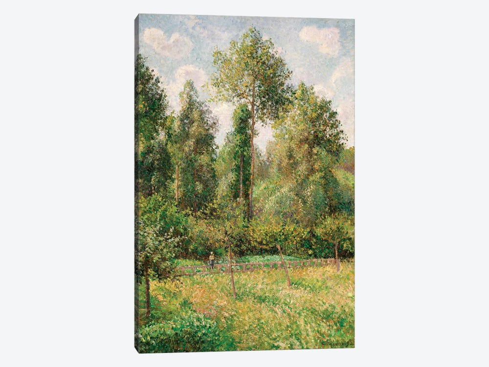 Poplars, Eragny by Camille Pissarro 1-piece Canvas Art