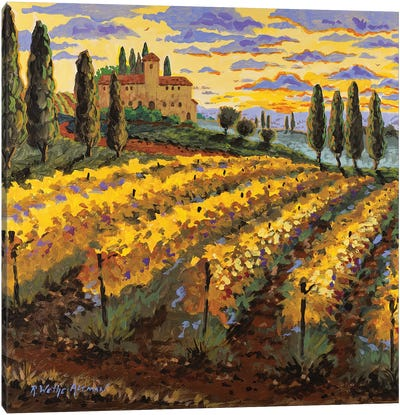 Sunset On The Vineyard Canvas Art Print