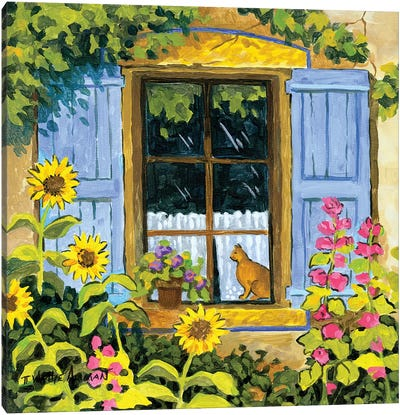 Cat In Window Canvas Art Print