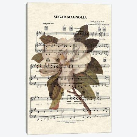Sugar Magnolia Canvas Print #WAM35} by WordsAndMusicArt Art Print