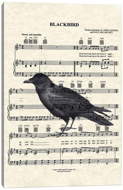 Blackbird With Large Bird Canvas Art Print