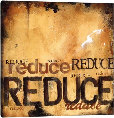 Reduce Canvas Art Print
