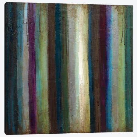 Striations I Canvas Print #WAN51} by Wani Pasion Canvas Art Print
