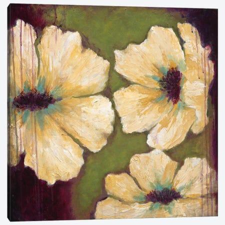 Blooms II Canvas Print #WAN7} by Wani Pasion Canvas Art Print