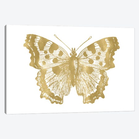 Butterfly I Gold Canvas Print #WAO106} by Willow & Olive Canvas Wall Art