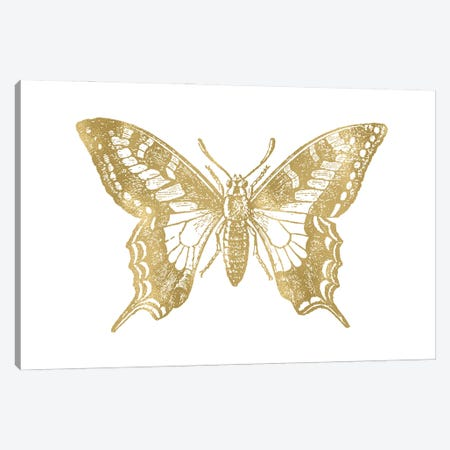 Butterfly II Gold Canvas Print #WAO108} by Willow & Olive Canvas Art Print