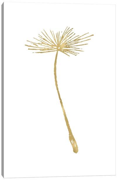Dandelion II Gold Canvas Art Print