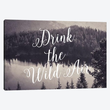 Drink The Wild Air Canvas Print #WAO14} by Willow & Olive by Amy Brinkman Canvas Art Print