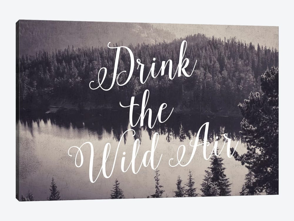 Drink The Wild Air by Willow & Olive 1-piece Canvas Print