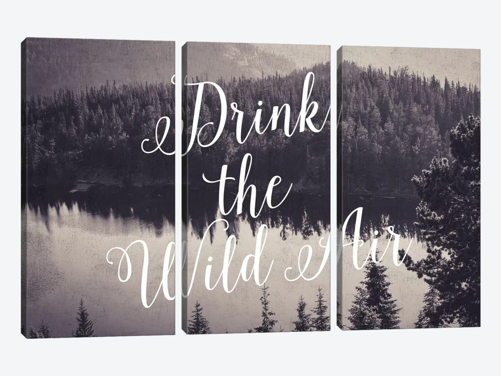 Drink The Wild Air by Willow & Olive 3-piece Art Print