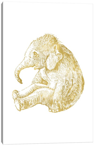 Elephant Baby Gold Canvas Art Print