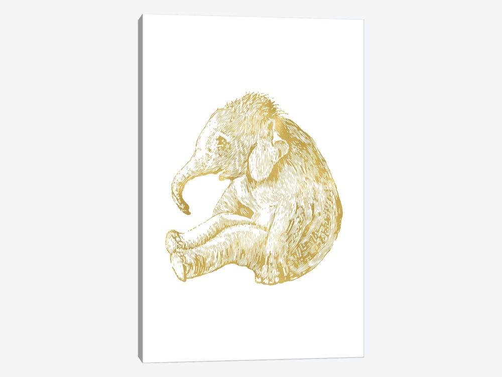 Elephant Baby Gold by Willow & Olive by Amy Brinkman 1-piece Canvas Wall Art