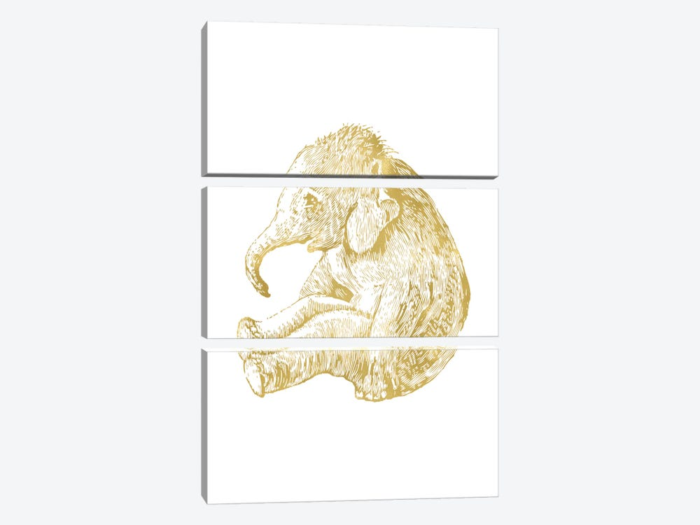 Elephant Baby Gold by Willow & Olive by Amy Brinkman 3-piece Canvas Wall Art