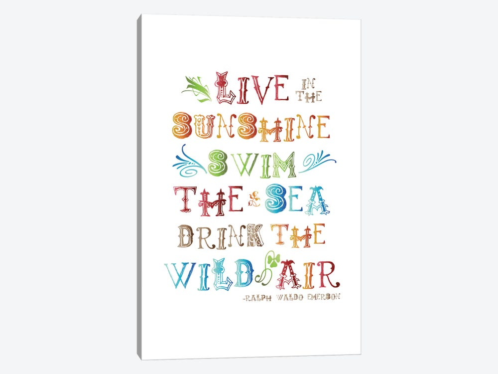 Live In The Sunshine Multi-color - Emerson by Willow & Olive 1-piece Canvas Art