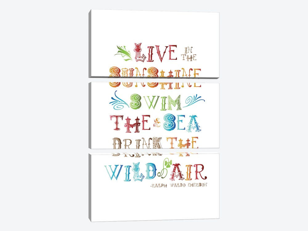 Live In The Sunshine Multi-color - Emerson by Willow & Olive 3-piece Canvas Art