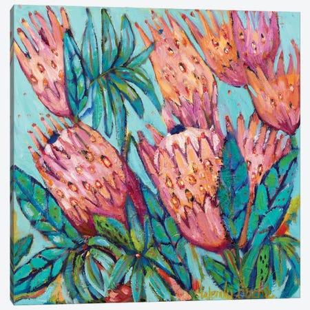Protea Bloom Canvas Print #WBC33} by Wendy Bache Canvas Art