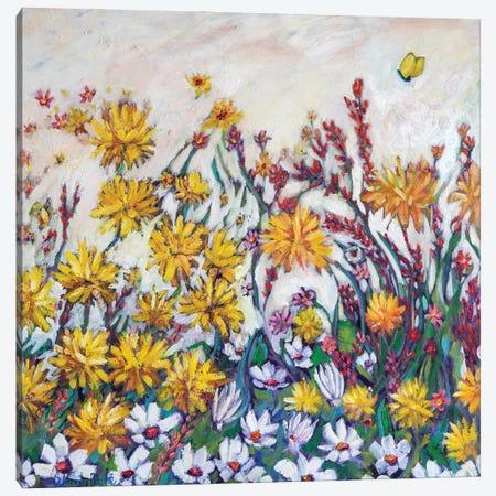 Sun Kissed Field Canvas Print #WBC52} by Wendy Bache Canvas Art