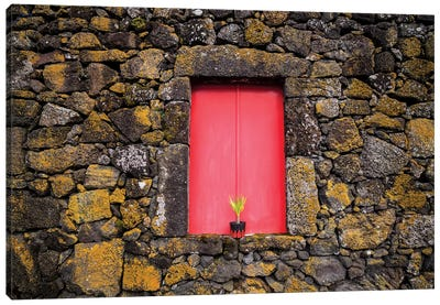 Portugal, Azores, Pico Island, Madalena. Red doors on barn Canvas Art Print
