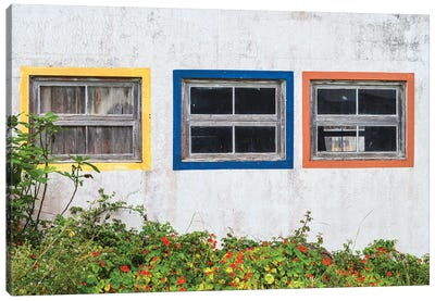 Portugal, Azores, Santa Maria Island, Anjos. Windows of the old factory Canvas Art Print