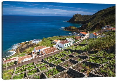 Portugal, Azores, Santa Maria Island, Maia. Elevated view of town and volcanic rock vineyards Canvas Art Print