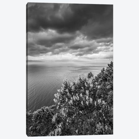 Portugal, Azores, Pico Island, Terra Alta. Miradouro da Terra Alta, viewpoint to Sao Jorge Island Canvas Print #WBI167} by Walter Bibikow Canvas Wall Art