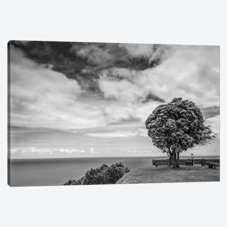 Portugal, Azores, Sao Miguel Island, Baia de Santa Iria. Miradouro de Santa Iria Canvas Print #WBI175} by Walter Bibikow Art Print